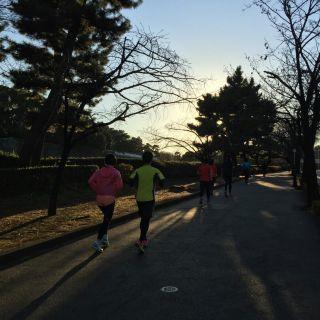 joglisジョギング.jpg